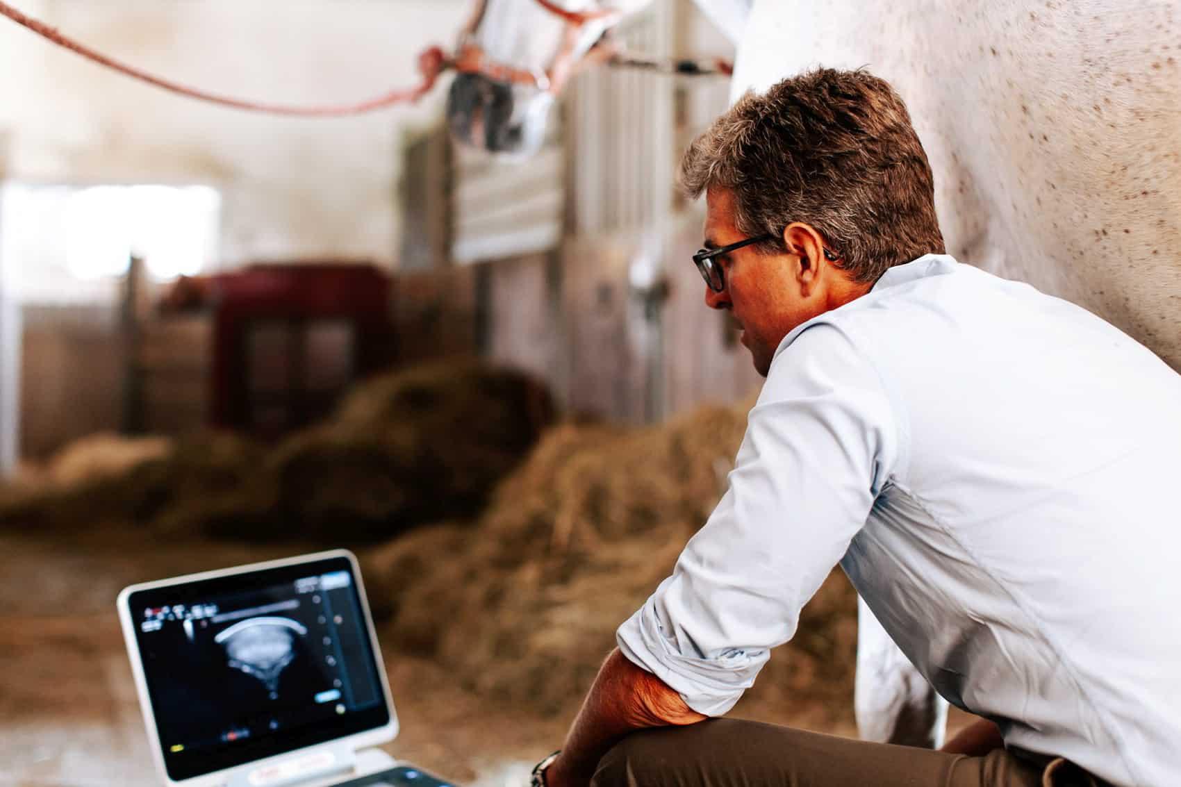 pferdesportpraxis-tierarzt-dr-matthias-keller-pferdespezialist-orthopaedische-und-manuelle-medizin-fuer-pferde-faszientherapie-chiropraktik-akupunktur-cft-prp-irap-chirofaszial-Sono