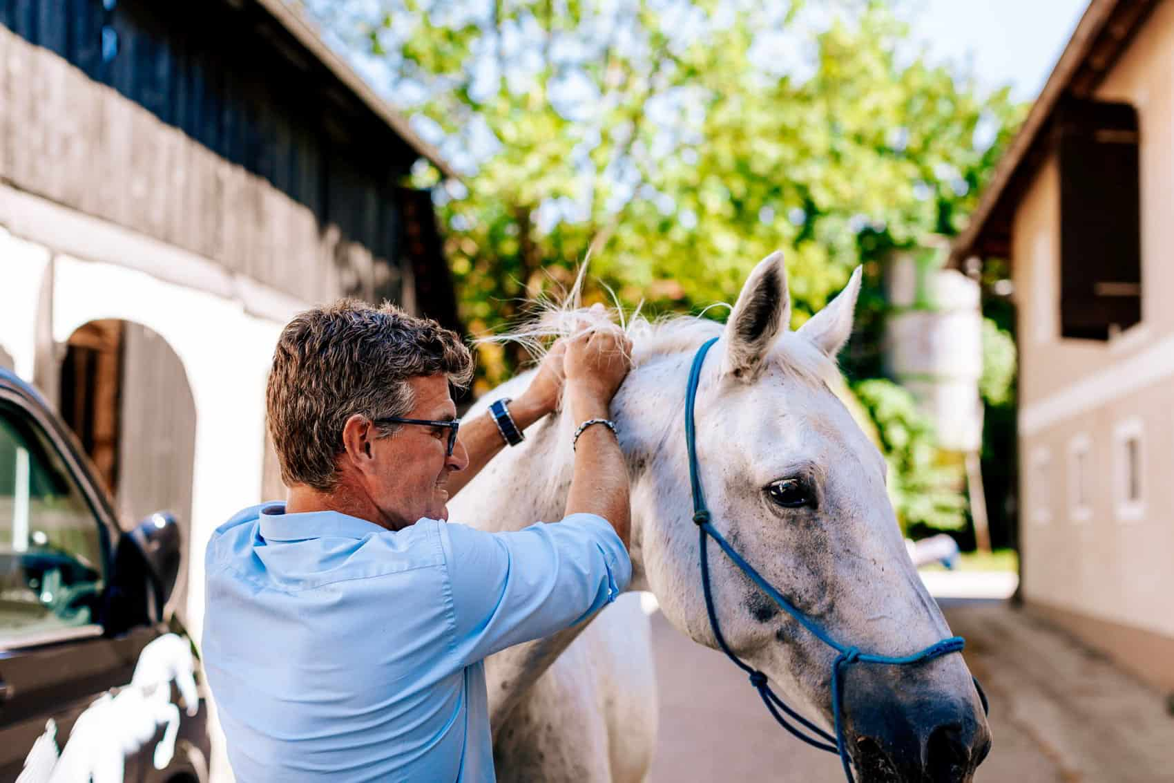 pferdesportpraxis-tierarzt-dr-matthias-keller-pferdespezialist-orthopaedische-und-manuelle-medizin-fuer-pferde-faszientherapie-chiropraktik-akupunktur-cft-prp-irap-chirofaszial-Zylinder