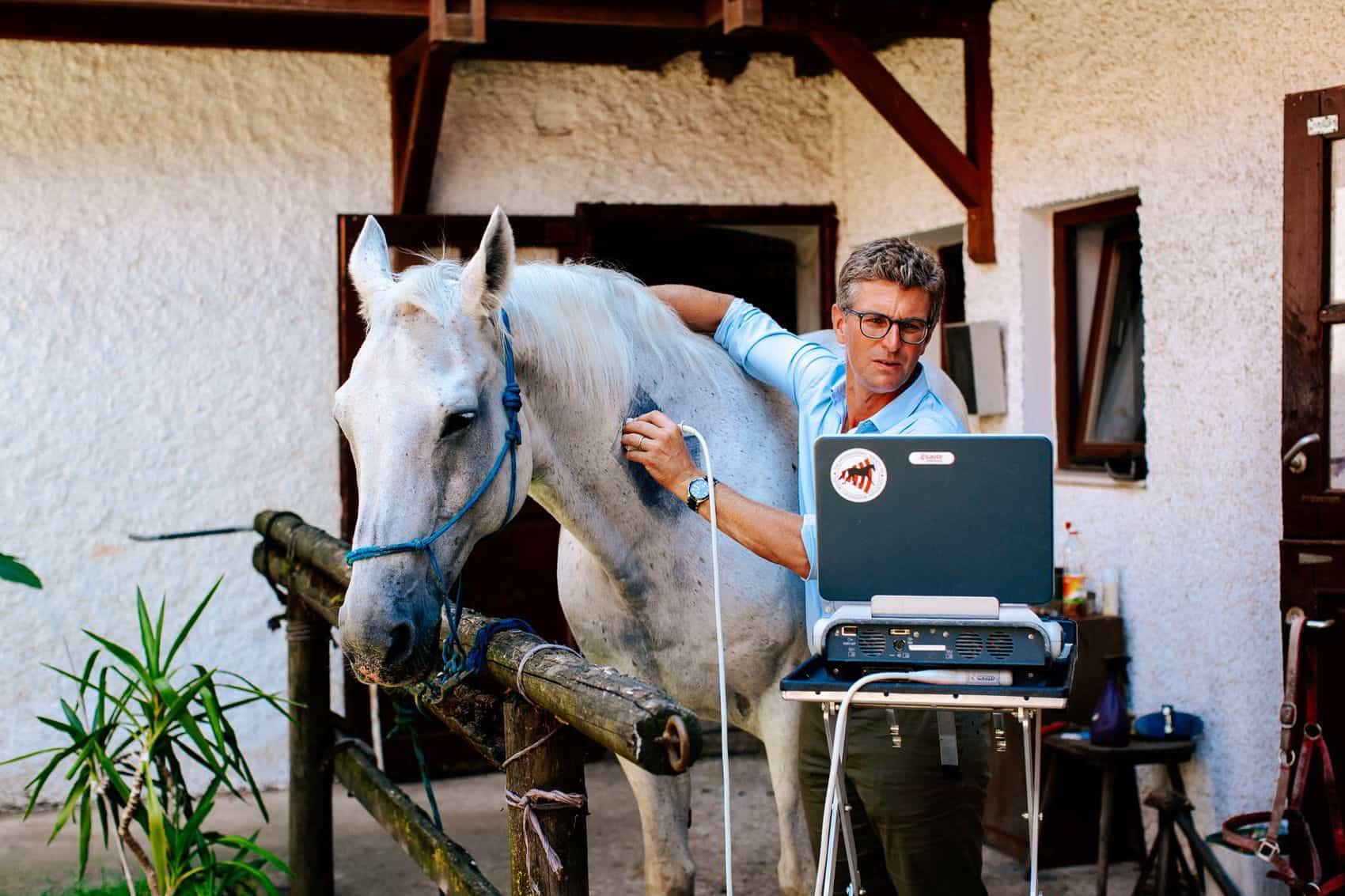 pferdesportpraxis-tierarzt-dr-matthias-keller-pferdespezialist-orthopaedische-und-manuelle-medizin-fuer-pferde-faszientherapie-chiropraktik-akupunktur-cft-prp-irap-chirofaszial-sono3